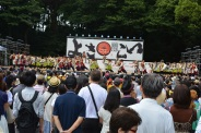 Festival with dancing