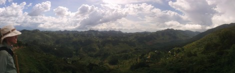 Panorama from the gorilla walk.