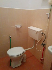 See, there is a hose in the bathroom.
